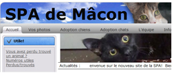 Site web de la SPA de Mâcon